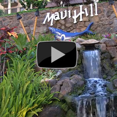 Maui Lea Property Video